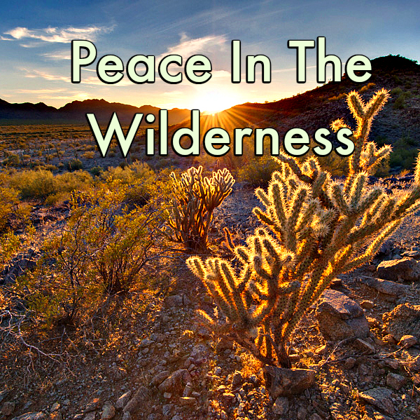 Peace in the Wilderness