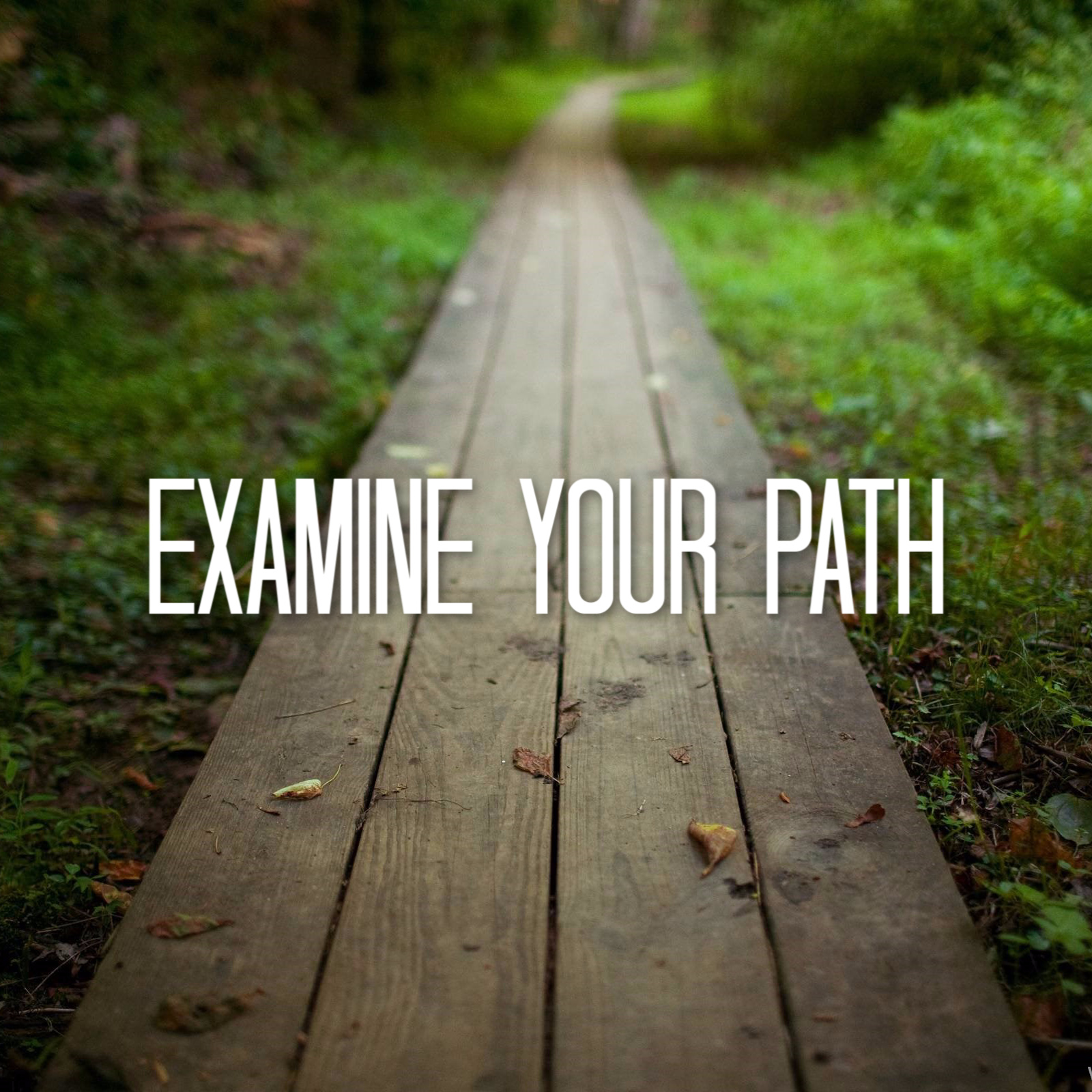 Examine Your Path