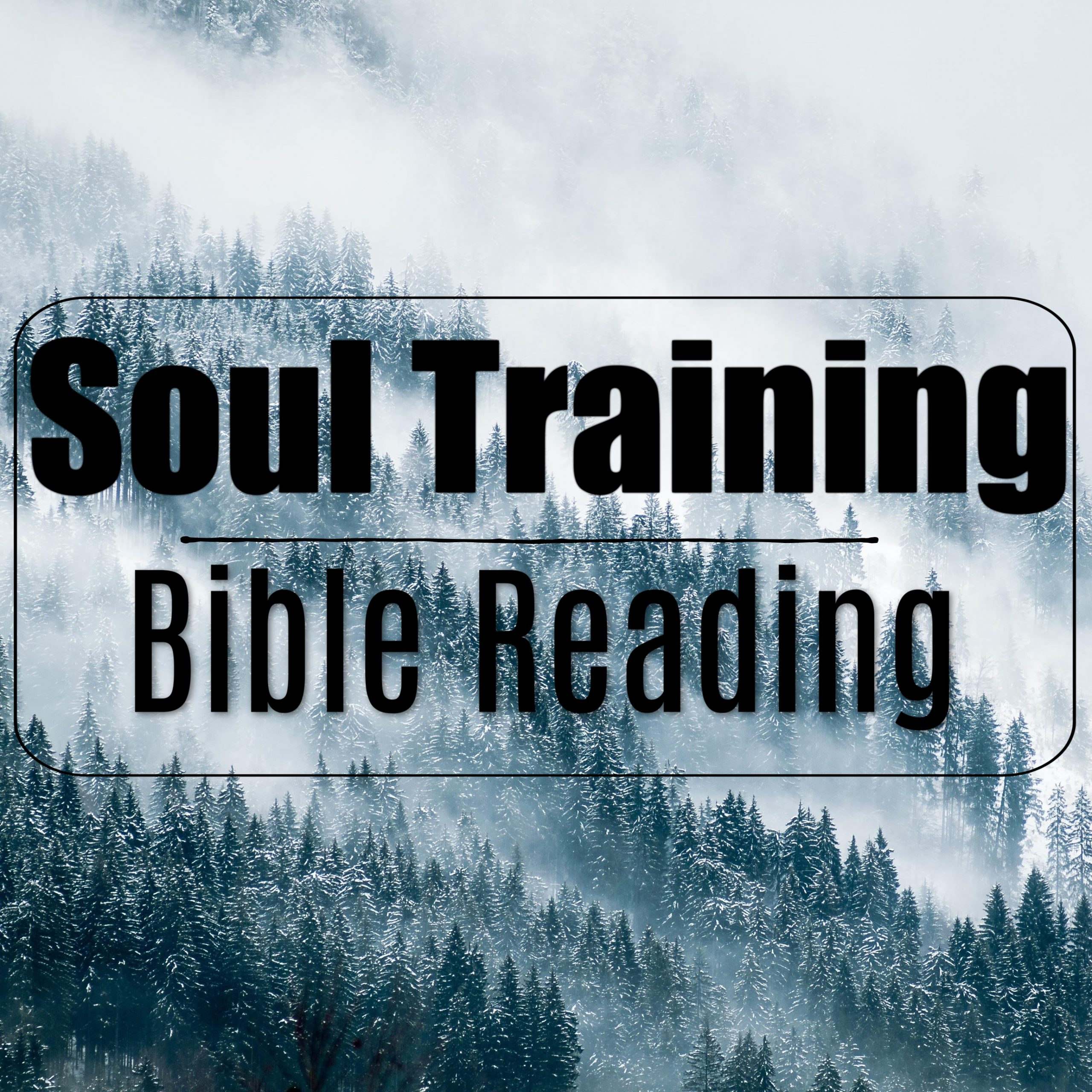 Soul Training- Bible Reading